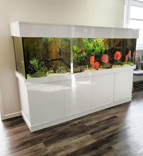 Aquariumkombination nach Maß